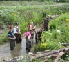 Volunteers work on Black Ash Creek restoration