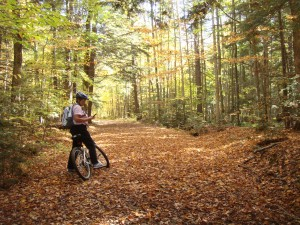 Copeland Forest - Simcoe County Trails photo