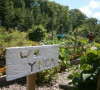 Wasaga Beach community garden -AWARESimcoe photo
