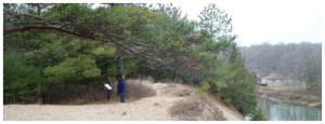 Ganaraska Trail - Wasaga section