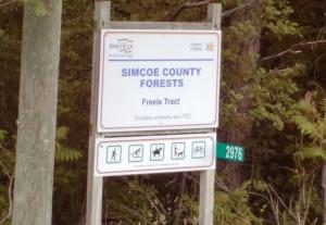AWARE Simcoe photo