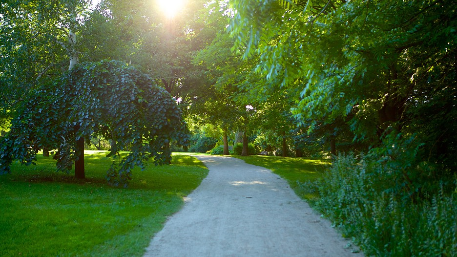 Barrie Arboretum at Sunnidale Park