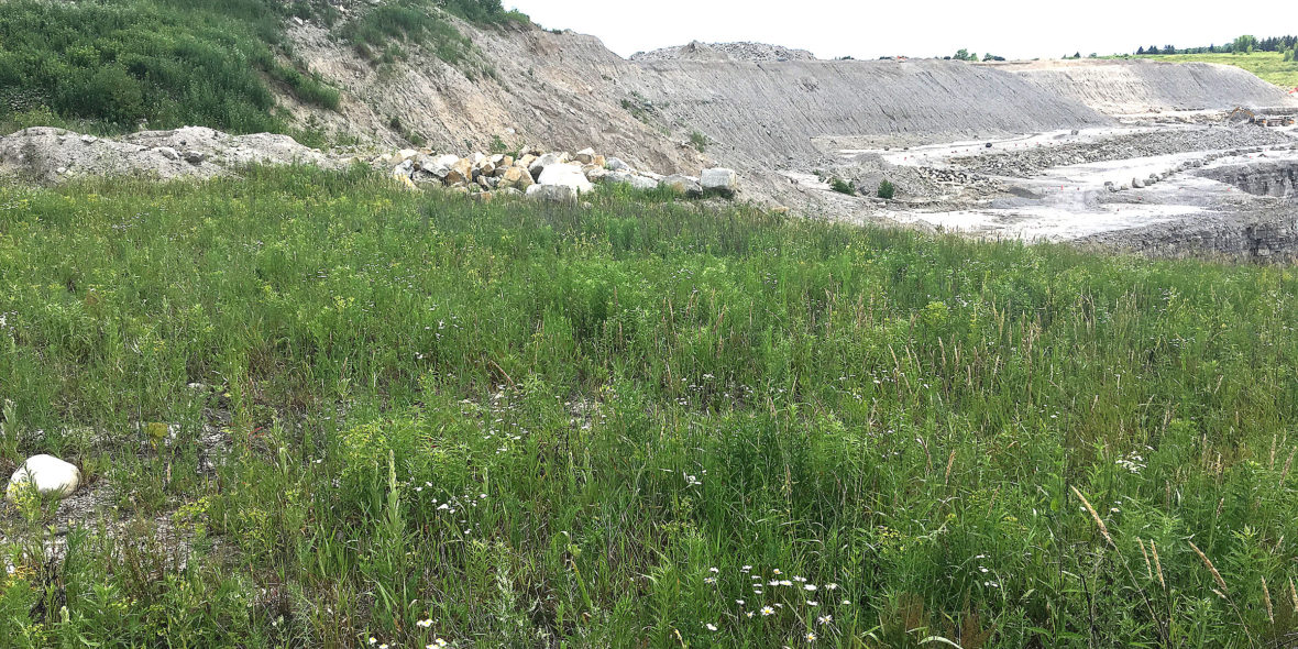 The landfill is being proposed for a pit currently operating as a limestone quarry. Andrew Lupton/CBC photo