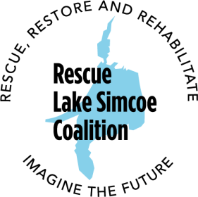 Lake Simcoe – The facts