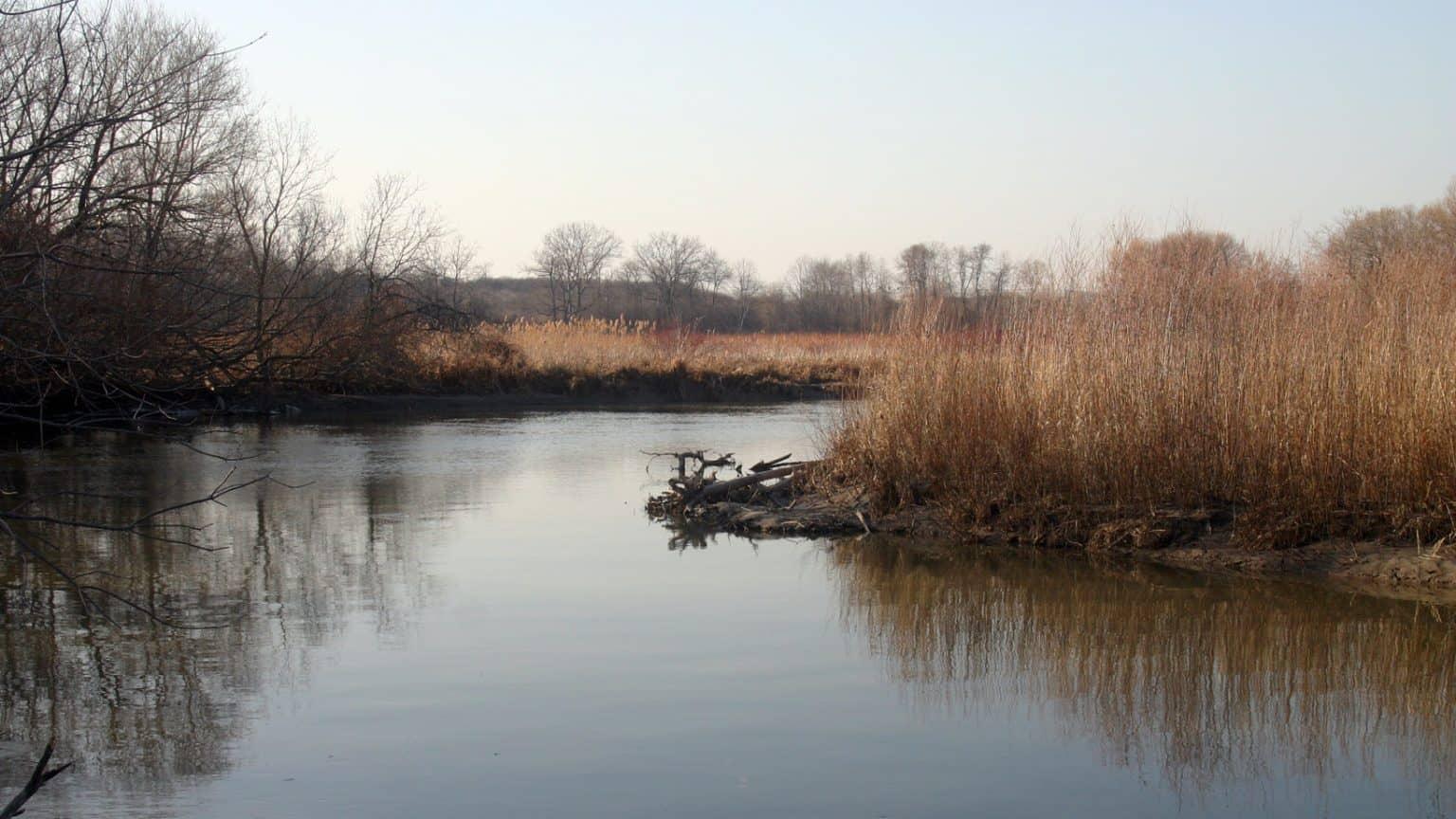 Duffin's Creek
